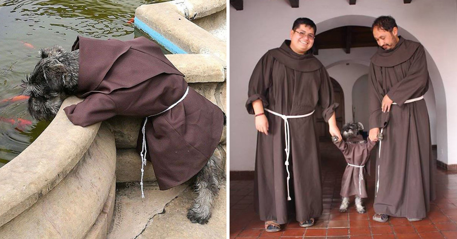 Bolivian Monastery Adopts Homeless Dog, And He Becomes 'Friar Mustache'