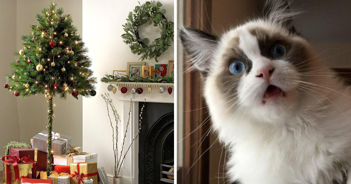 Cat Owners Can Finally Buy Half Christmas Trees For Their