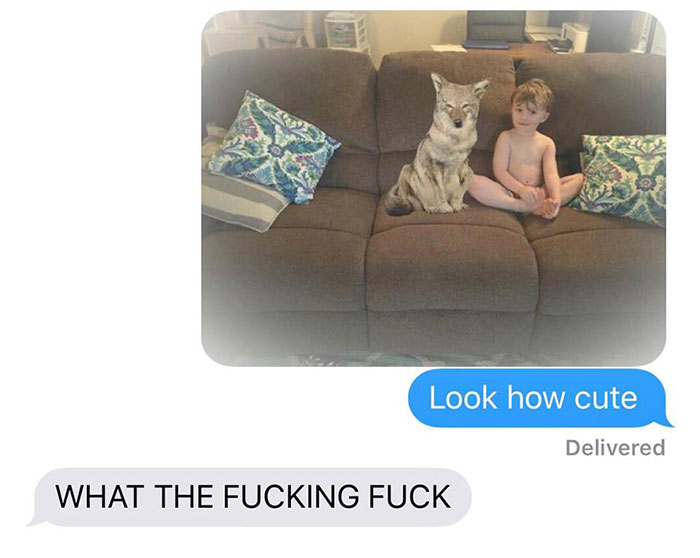 Wife Texts Husband She Brought A Cute Puppy Home, But The Photo Shows A Coyote And He Hilariously Freaks Out