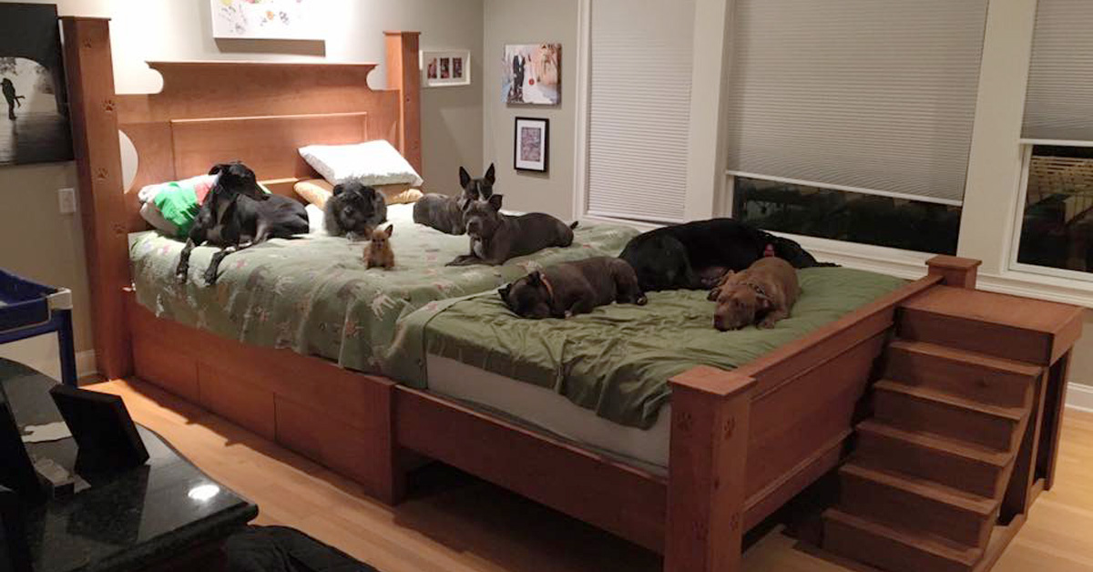 Couple Custom Builds A Giant Bed So They Can Sleep With
