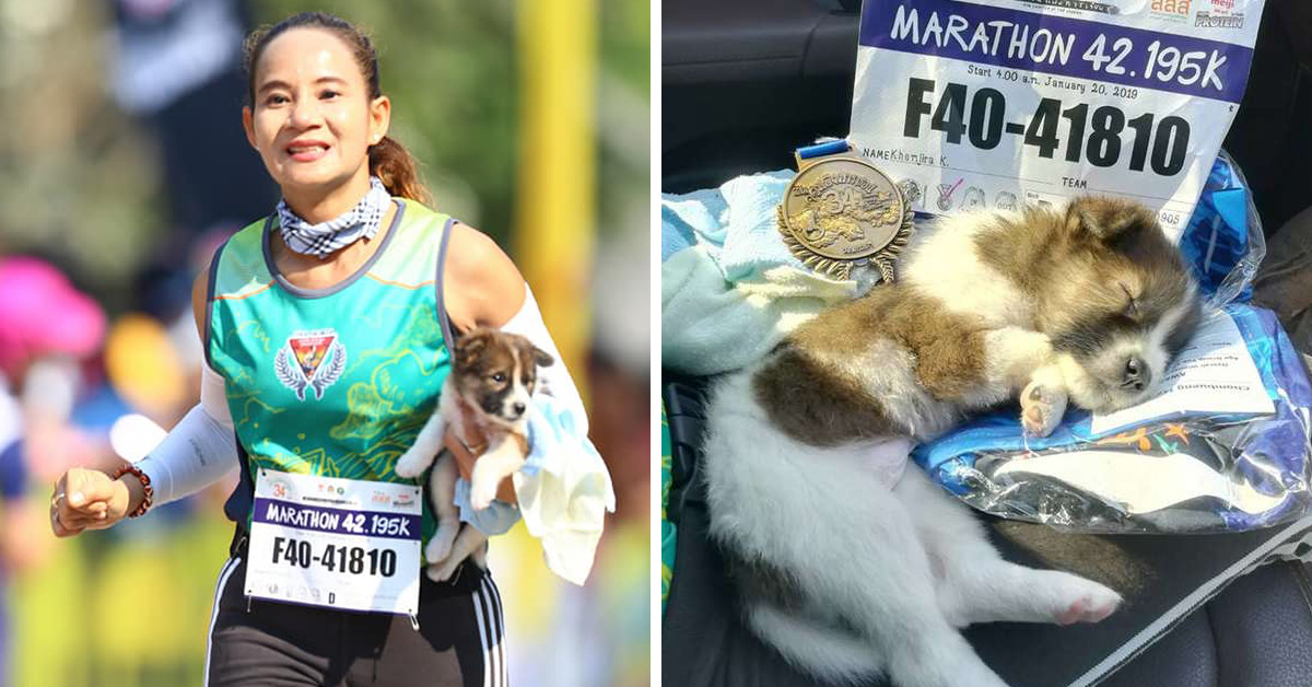 Woman Finishes Marathon Carrying A Stray Puppy She Stopped To Rescue Along The Way