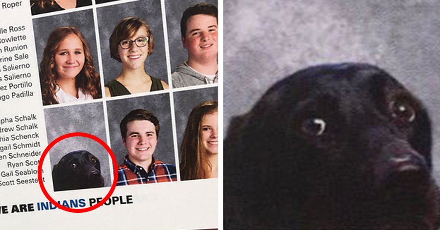 School Includes Teen's Service Dog In Its Yearbook And It's Just Adorable