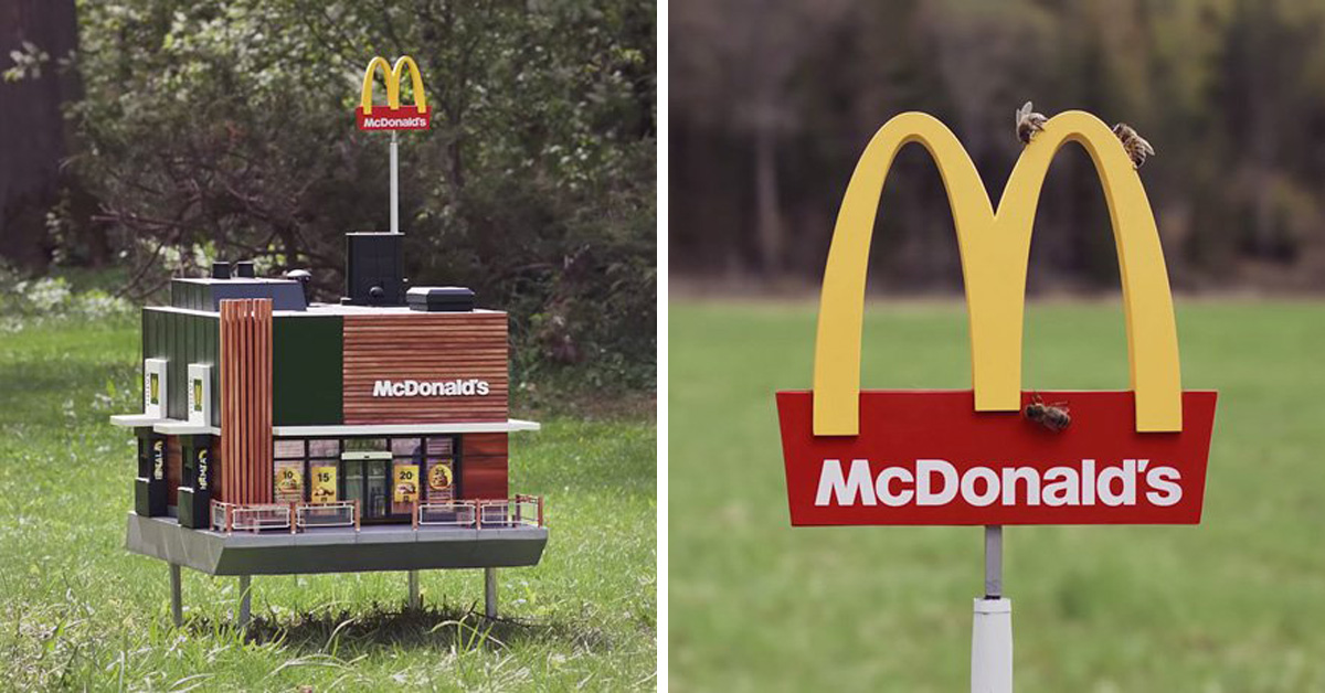 McDonald's Opens World's Smallest 'McHive' For Bees