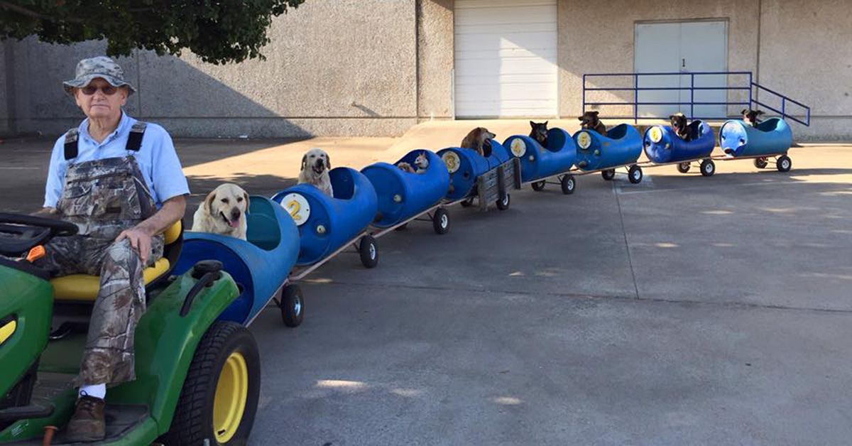 80-Year-Old Man Builds A 'Dog Train' To Take Rescued Homeless Dogs Out On Adventures