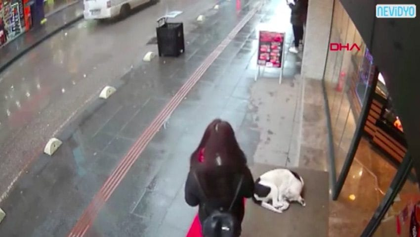 Kind Woman Caught On Camera Giving Her Own Scarf To A ...
